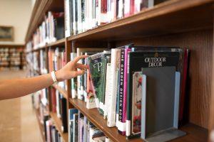 Architecture Book Bindings Bookcase